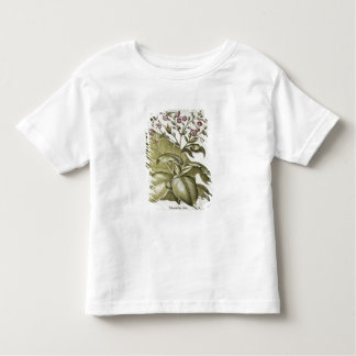 Tobacco plant, from the 'Hortus Eystettensis' by B Toddler T-Shirt