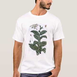 Tobacco plant, plate 7, from 'Collection Precieuse T-Shirt