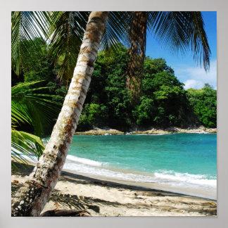 Tobago - island paradise poster