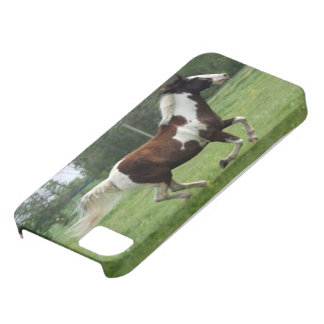 Tobiano Tenessee Walker Phone Case iPhone 5 Covers