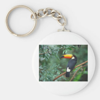 Toco Toucan Basic Round Button Key Ring