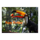 Toco Toucan Birthday Card