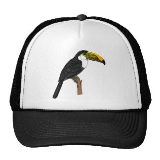 Toco Toucan Trucker Hats