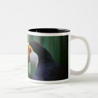 Toco Toucan (South America), Panama Two-Tone Coffee Mug