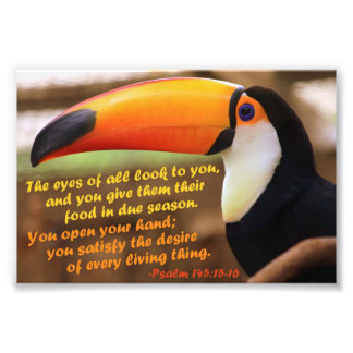 Toco Toucan with Psalm 145:15-16 Photograph