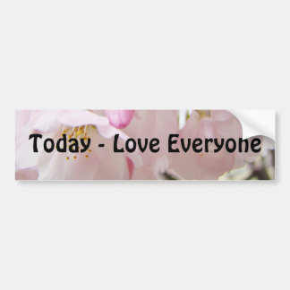 Today Love Everyone bumper stickers Blossoms