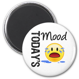 Today's Mood Emoticon Crying Magnet