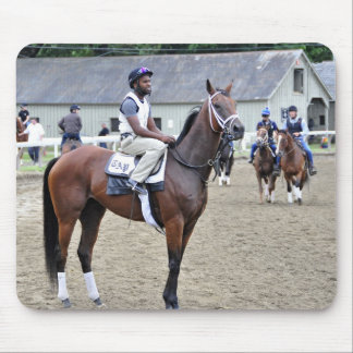 Todd Pletcher Filly Mouse Pad