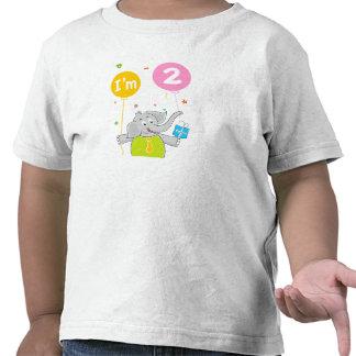 Toddler's 2nd Birthday Shirts