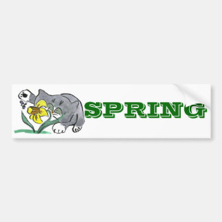 Todd's Paw and Buzzing Bee in Spring Bumper Sticker