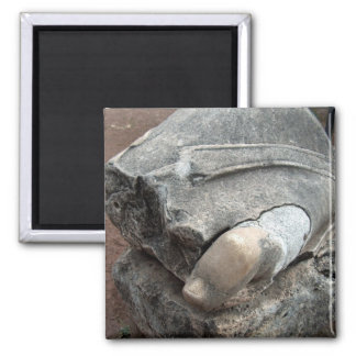 Toe of Statue in Roman Ruins Refrigerator Magnets