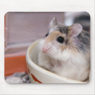Tofu the hamster mouse mat