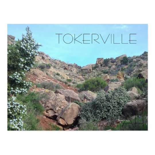 Tokerville UTAH Postcard