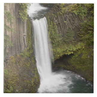 Toketee Falls in Douglas county, Oregon Tile