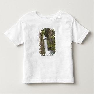 Toketee Falls in Douglas county, Oregon Toddler T-Shirt