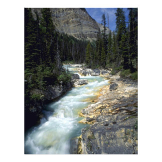 Tokumn Creek, Marble Canyon, British Columbia, Can Full Color Flyer