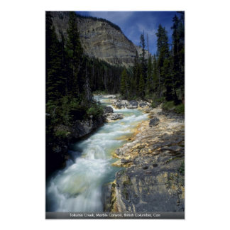 Tokumn Creek Marble Canyon British Columbia Can Posters
