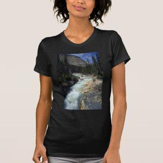 Tokumn Creek, Marble Canyon, British Columbia, Can Tee Shirts