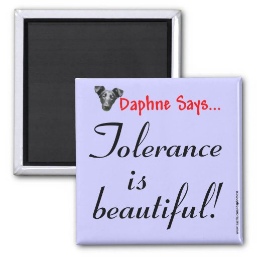 Tolerance Magnet