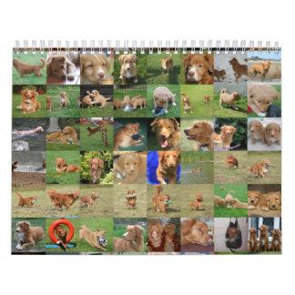 Toller Calendar