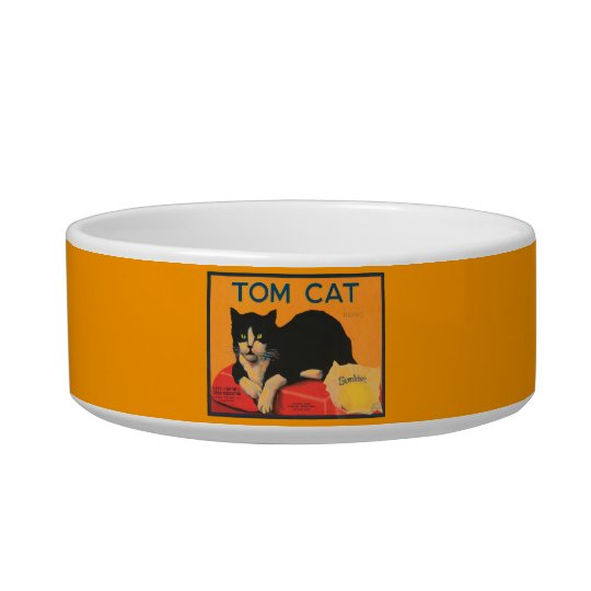 """Tom Cat"" Bowl"