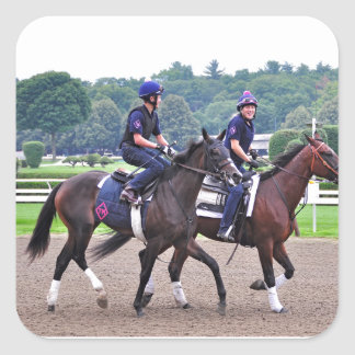 Tom Morely Workouts at Saratoga Square Stickers