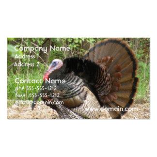 Tom Turkey Pack Of Standard Business Cards