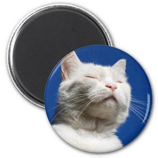 Tom white cat 6 cm round magnet