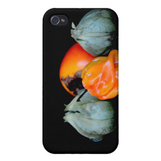 tomatillo pepper persimmon fruit vegetable image iPhone 4 covers