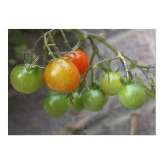 """Tomato Plant Invitation 5"""" X 7"""" Invitation Card"""