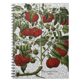 Tomato Plant Notebooks