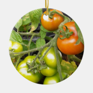 Tomato Plant Round Ceramic Decoration