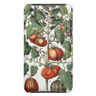 Tomatoes and Melons: 1.Poma amoris fructu luteo; 2 iPod Touch Cases