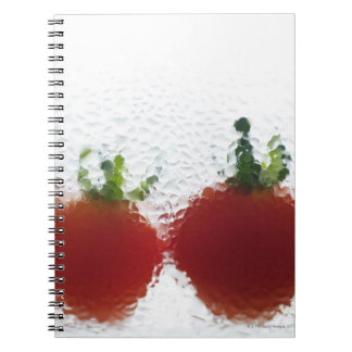 Tomatoes in water notebooks