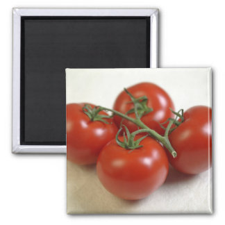 Tomatoes on the vine For use in USA only.) Magnet