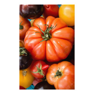 Tomatoes Stationery Paper