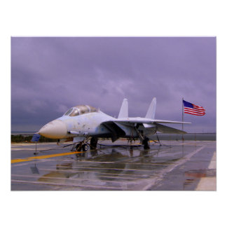Tomcat at Patriots Point Poster