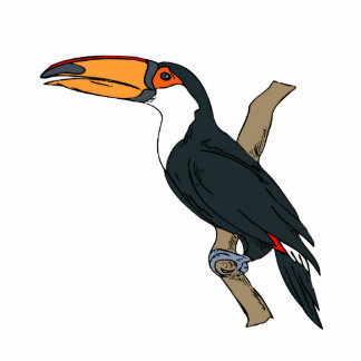 Tomino Toucan Acrylic Cut Out