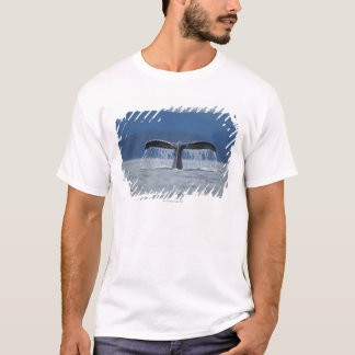 Tongass National Forest, Humpback T-Shirt