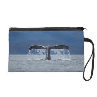 Tongass National Forest, Humpback Wristlets
