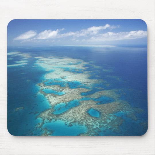 Tongue Reef, Great Barrier Reef Marine Park, Mouse Mat