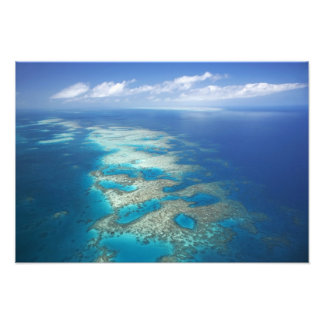 Tongue Reef, Great Barrier Reef Marine Park, Photo Print