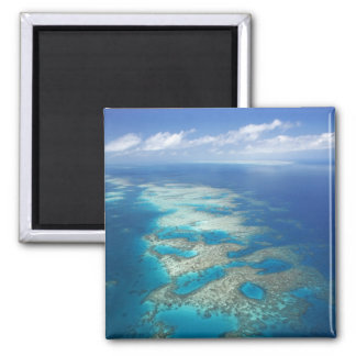 Tongue Reef, Great Barrier Reef Marine Park, Square Magnet