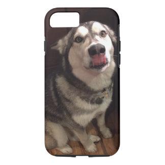 Tongue Teasing Alaskan Malamute Photograph iPhone 7 Case
