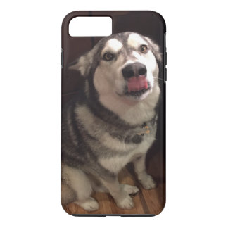 Tongue Teasing Alaskan Malamute Photograph iPhone 7 Plus Case