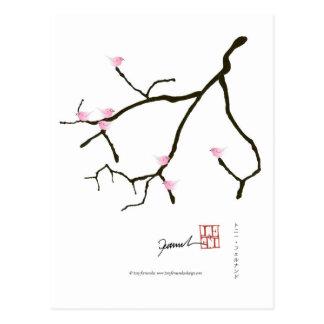 tony fernandes sakura with 7 pink birds 2 postcard