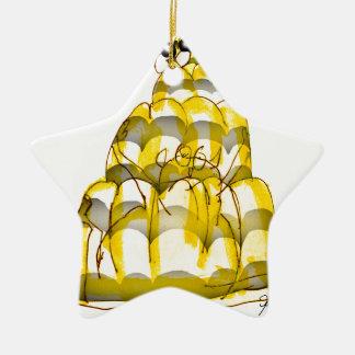 tony fernandes's honey bee jello ceramic star decoration