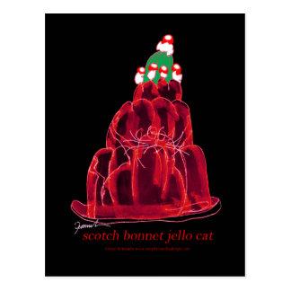 tony fernandes's scotch bonnet jello cat postcard