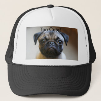 Too Cute! Hat