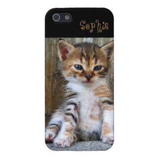 Too Cute Kitten iPhone 5 Cover